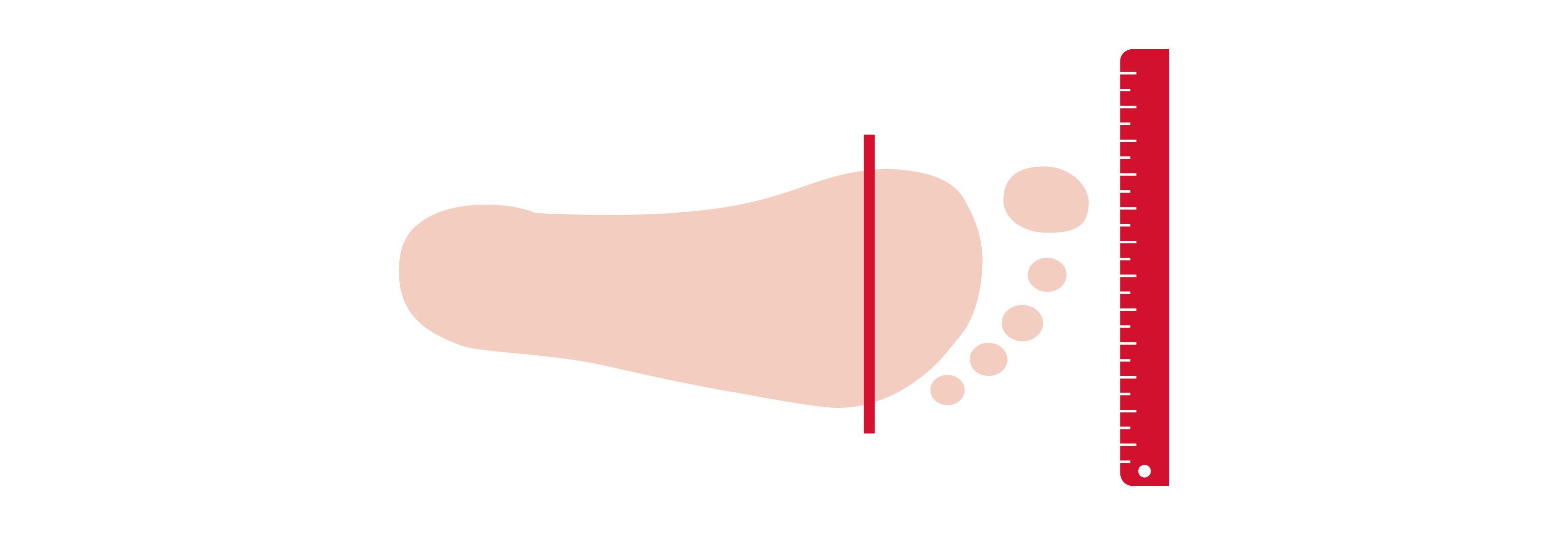 Schuhweite Die korrekte Schuhweite bestimmt den Bcl8O